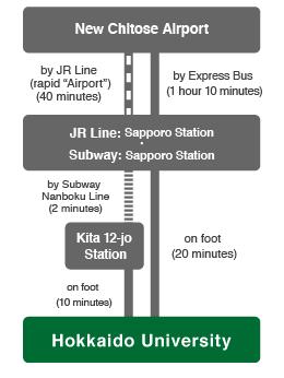 access_traffic